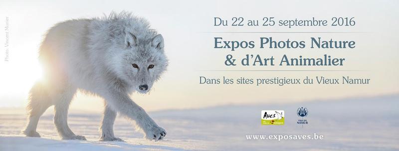 expos Aves -Expos Photos Nature et d'art animalier de Namur